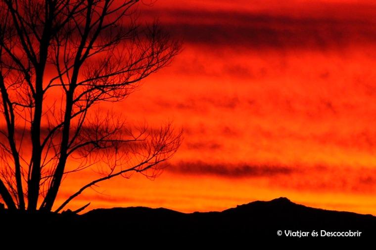 A part de veure molts ocells, vam veure una posta de sol brutal.