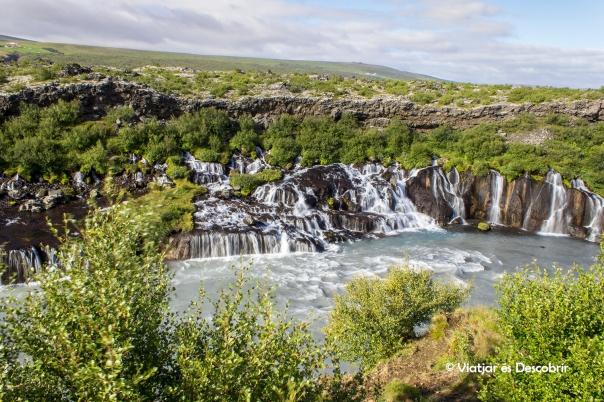 A la cascada Hraunfossar l'aigua sembla que surti de les roques.