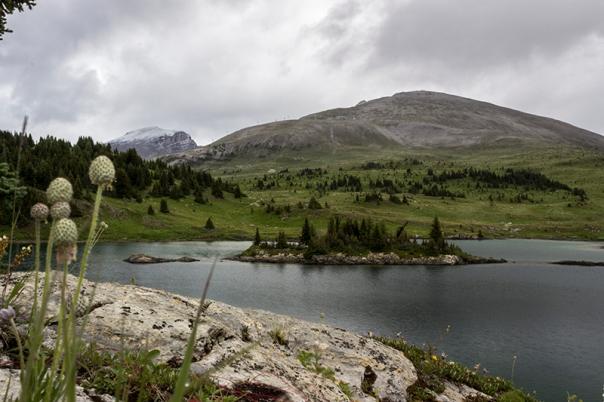 El Rock Isle Lake és preciós.