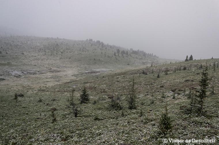 El temps canvia completament i es posa a nevar!