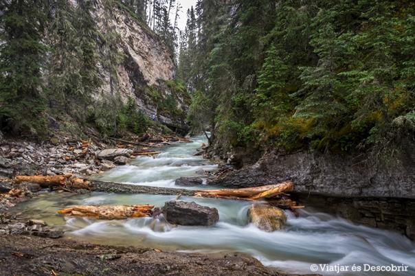 El Johnston Canyon és una obra d'art de l'aigua i el pas del temps.
