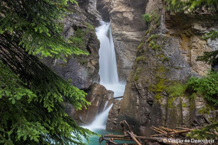 Les Lower falls del Johnston Canyon.