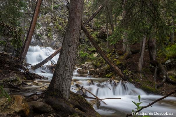 Seguint el camí que passa pel costat del riu arribem a l'últim salt d'aigua, que no és massa alt.