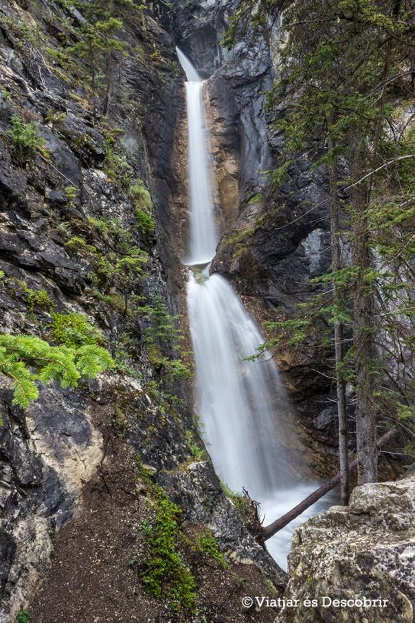 Les vistes de les Silverton Falls des del segon camí que agafem són molt millors.