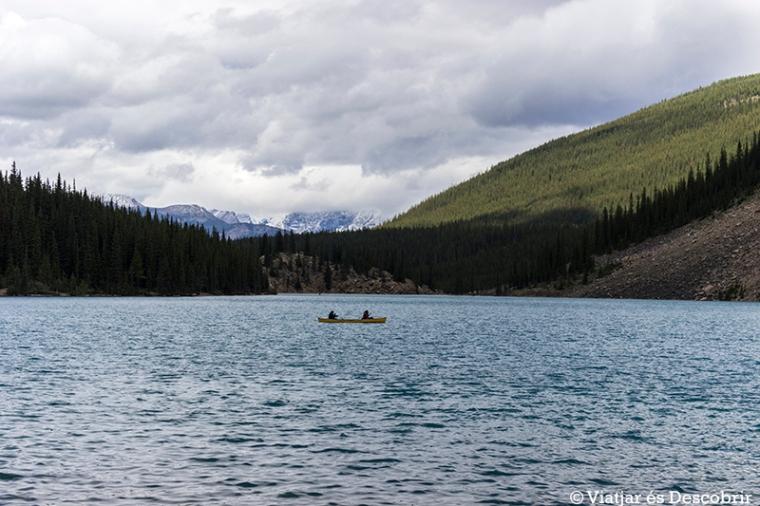 Quan passegem pel costat del Moraine Lake, veiem molta gent amb canoa.