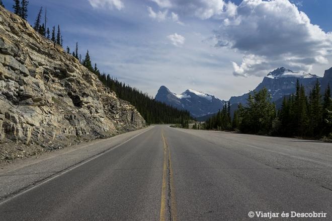 Al recòrrer la Icefield Parkway es veuen molts glaciars, muntanyes i llacs de les Rocalloses.