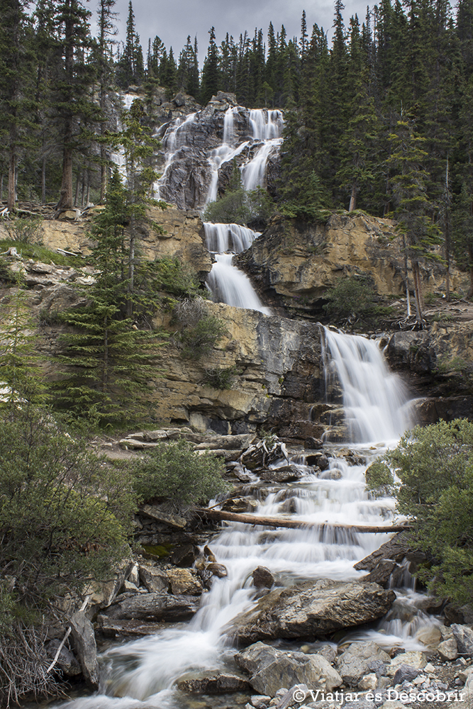 La Icefield Parkway està plena de cascades precioses.
