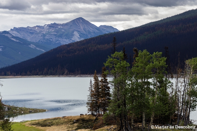 La zona del Medicine Lake, on estar prohibit aturar el cotxe, està molt cremada...