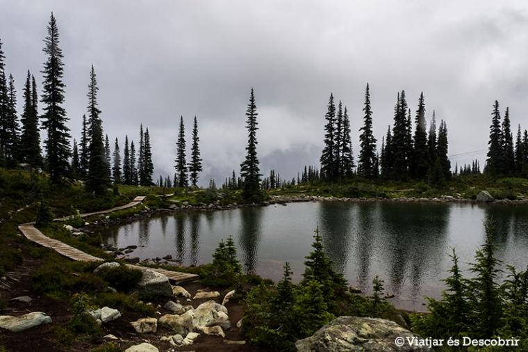 L'Harmony Lake és un llac fàcilment accessible.