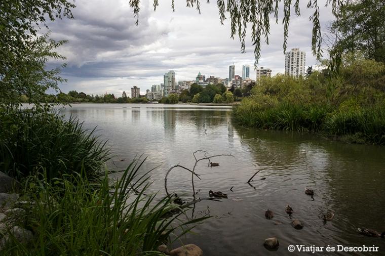 Des del parc, veiem l'skyline de Vancouver.
