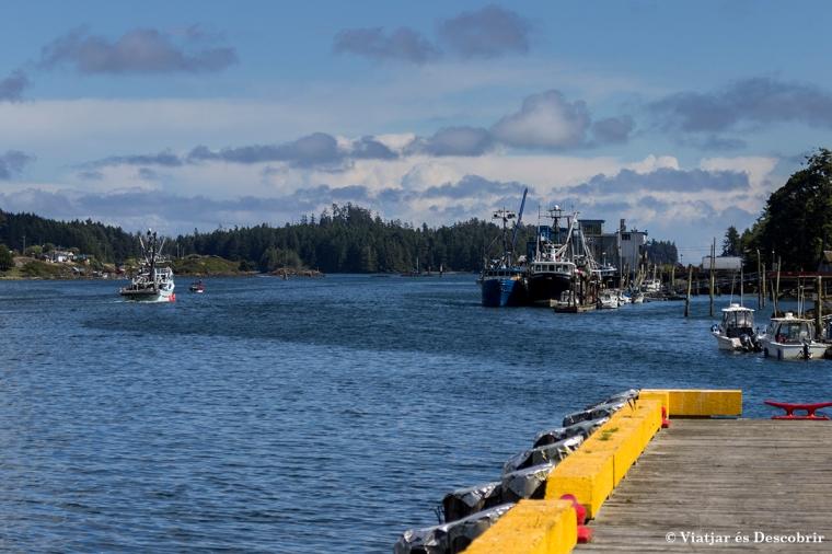 El port de Ucluelet és ben senzill.