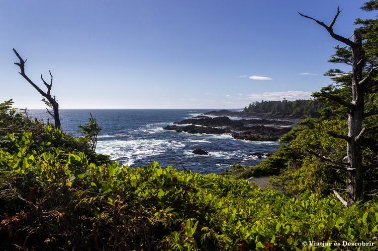 Passejar pel Wild Pacific Trail és molt recomenable.