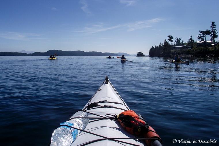 Per fi som al kayak! Només hem de sortir del port, per ser al Johnston Strait