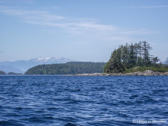 Tornem a Telegraph Cove per una altra ruta. Anar amb kayak per aquests paisatges, amb les muntanyes de Canadà nevades al fons, és preciós.