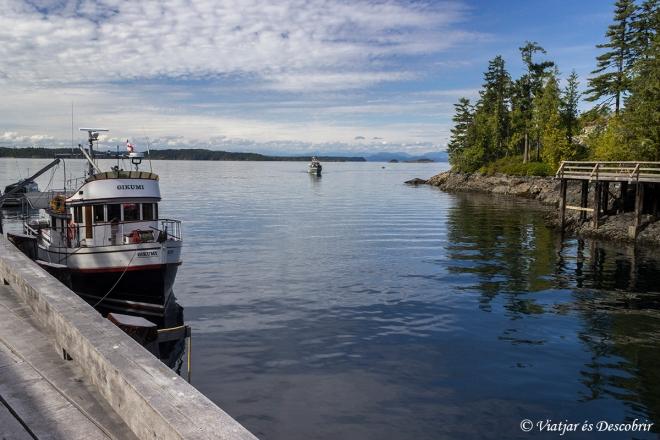 Des del poble, tenim unes grans vistes del Johnston Strait.