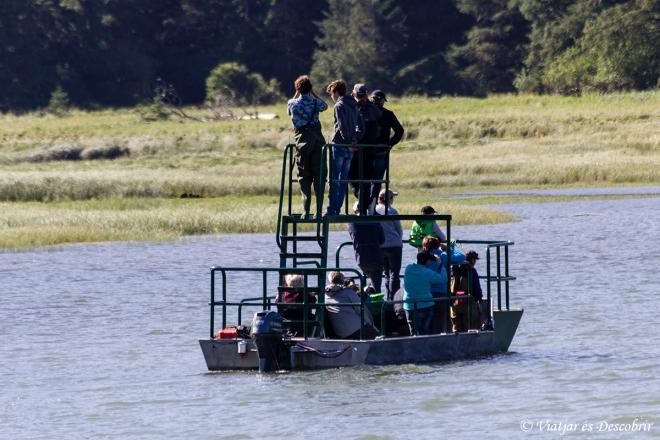 Amb aquesta embarcació sortim a veure els óssos.