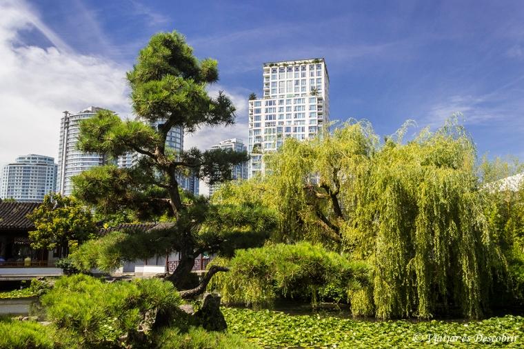 La part pública dels jardins és bonica, però no tant impressionant com la part centrals dels jardins.