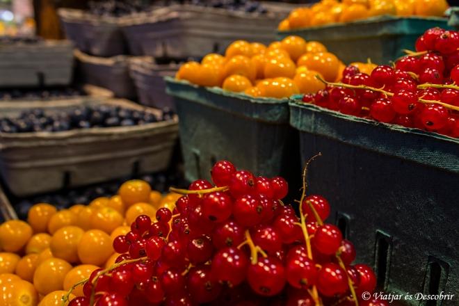 Ens sorprèn la gran varietat de fruits del bosc que hi ha.