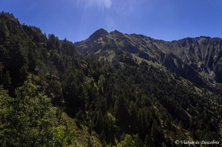 Muntanyes de l'Alt Pirineu
