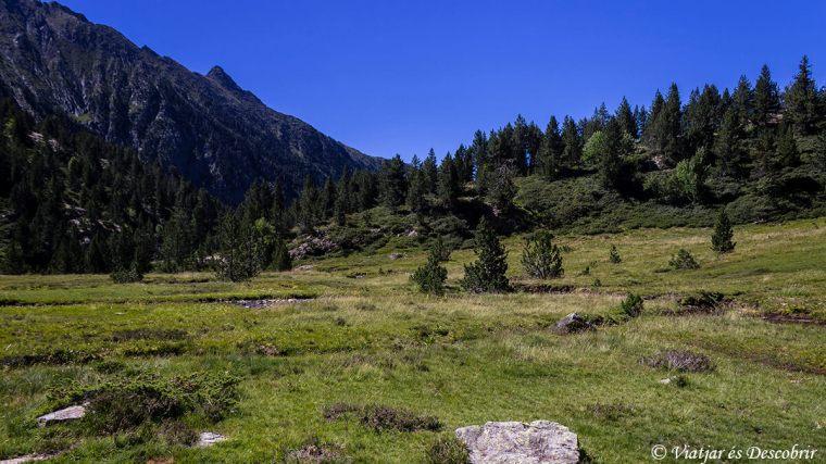 La Pleta de Guerossos Alt Pirineu