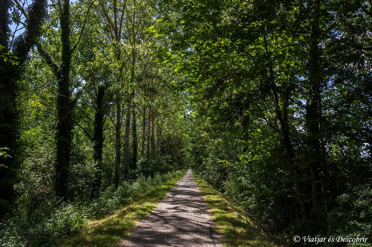 carril-bici-canal-garonne