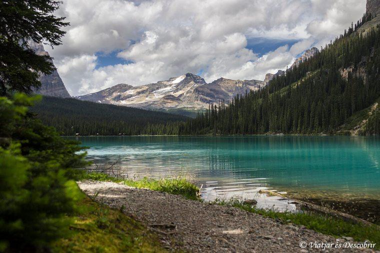 canada-rocalloses-muntanya