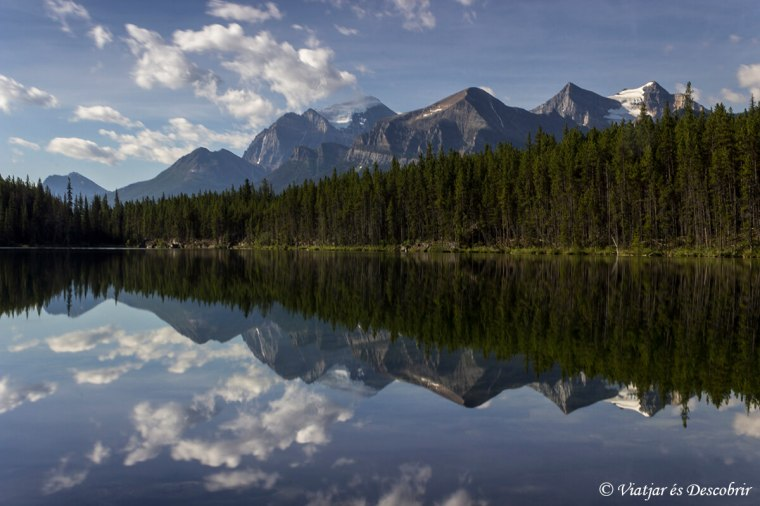 herbert-llac-canada