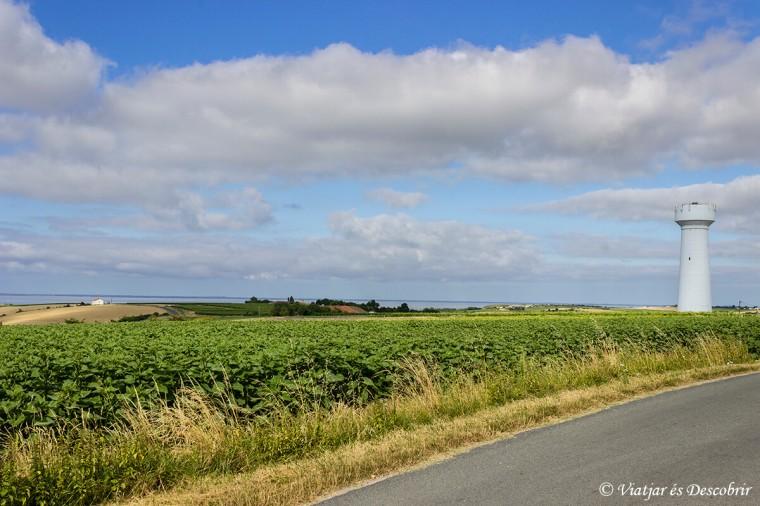 franca-rural-estuari