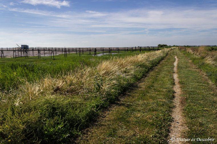 vitrezay-ruta-bici