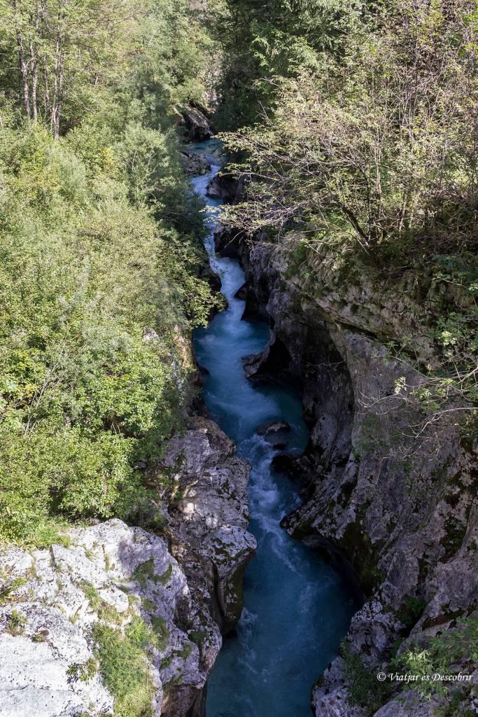 cañon del rio soca excursion entre agua y bosques