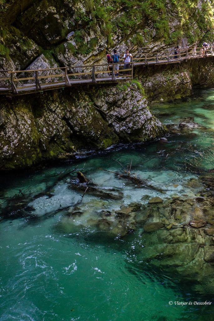 caminar-bled-eslovenia