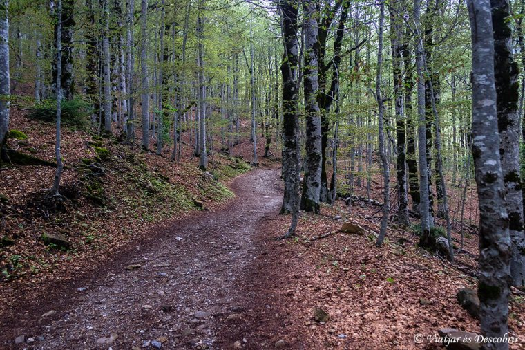 excursió fins al Mont Perdut