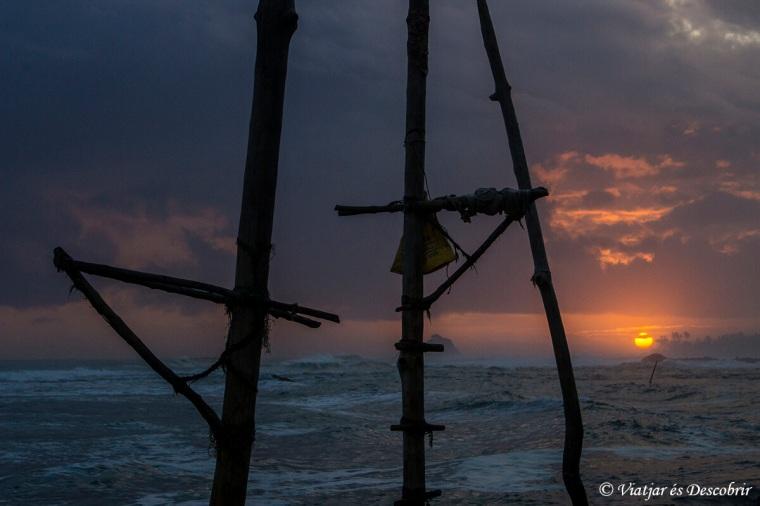 els tradicionals pals de la costa de sri lanka