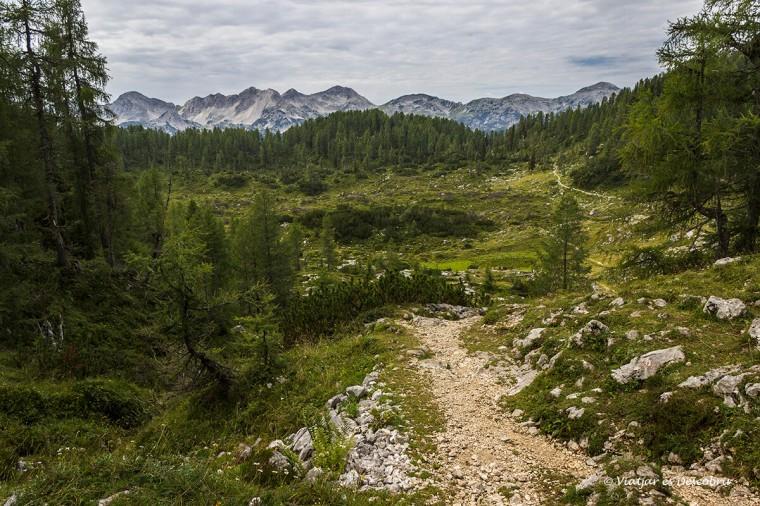 paisatge excursio fins la vall dels set llacs