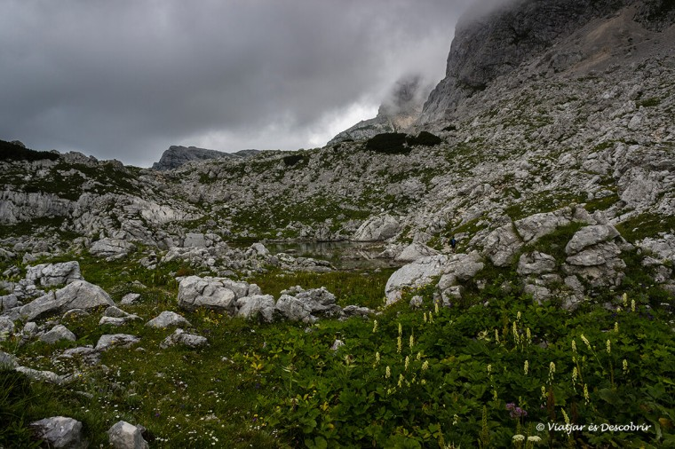 paisatges d'eslovenia sota la boira