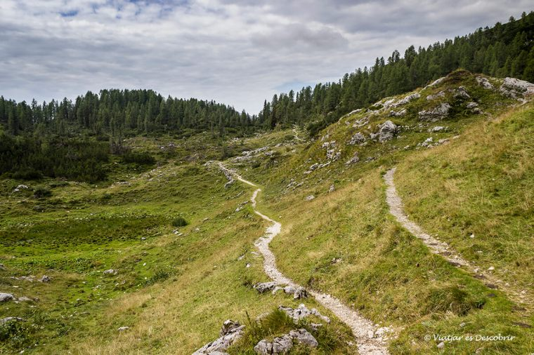 camins per caminar per eslovenia