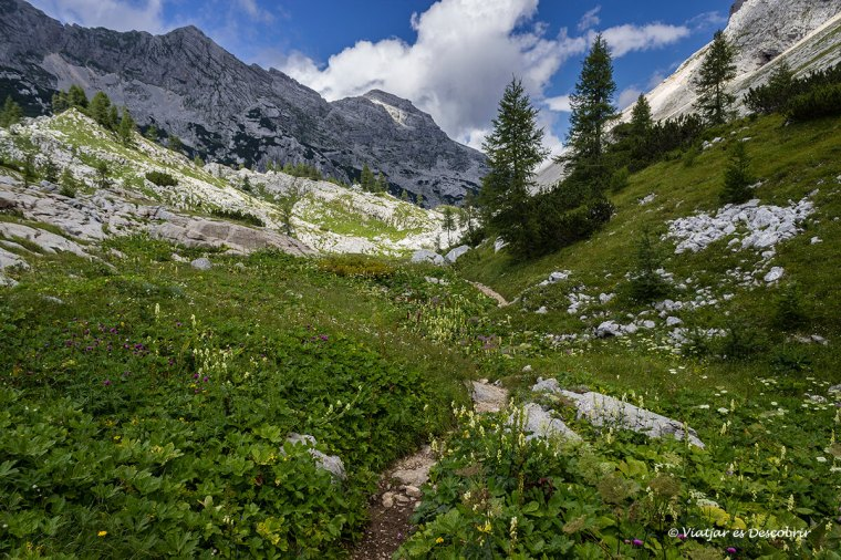 camins a la vall dels set llacs del triglav