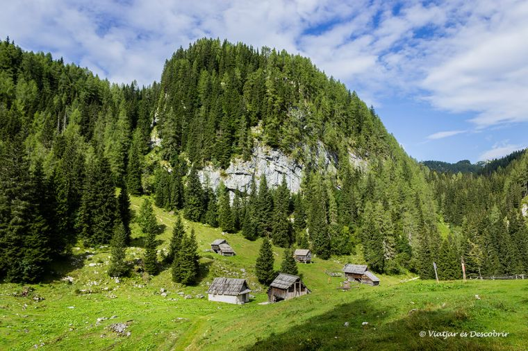 prat alpí a eslovènia