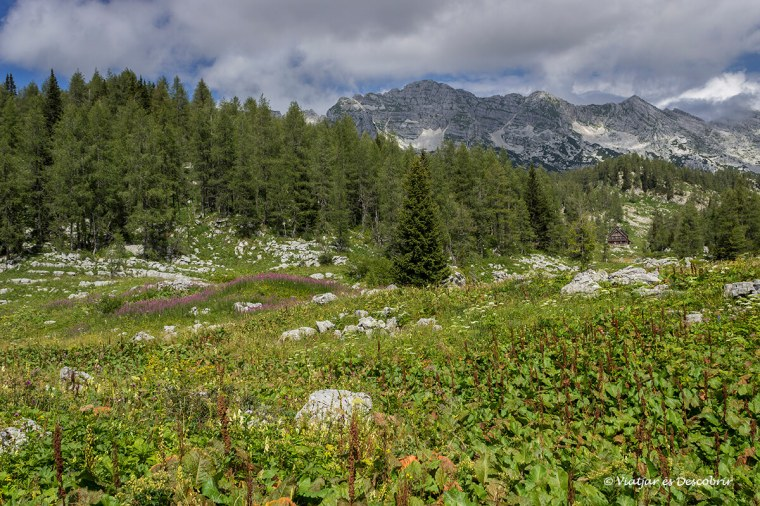 excursió a eslovènia pel triglav