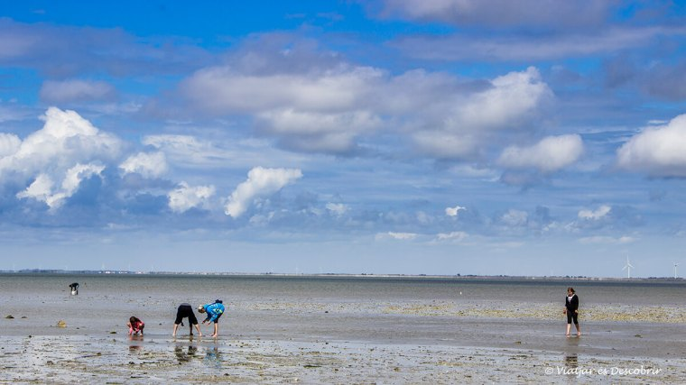 la costa de francesa amb marea baixa durant el viatge amb bicicleta per la costa