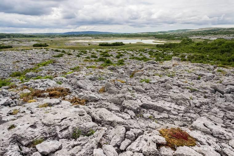 paisatge de roques al the burren np