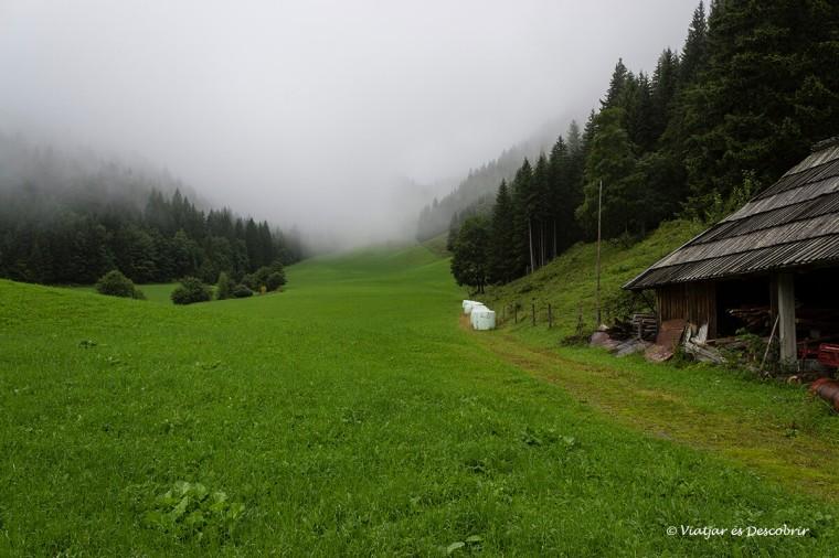 boira i granja a la topla valley al nord d'eslovenia