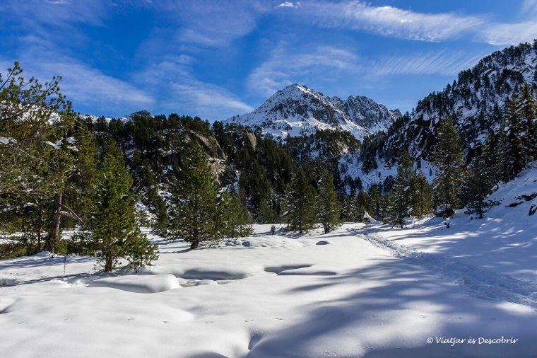 paisatge nevat a aigüestortes dins la vall d'aran