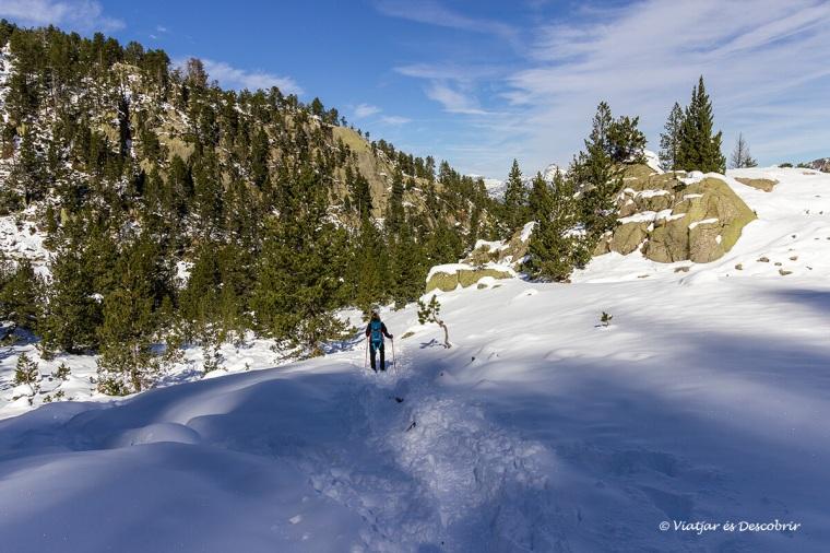 excursio amb neu a la vall d'aran