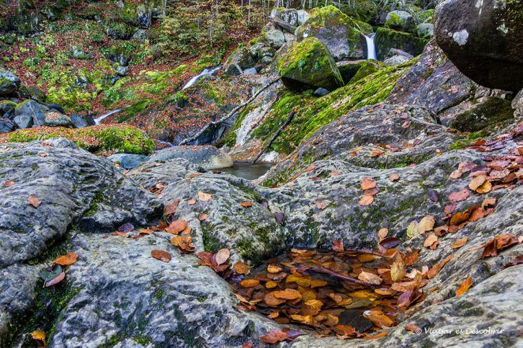 visita a l'artiga de lin de la vall d'aran