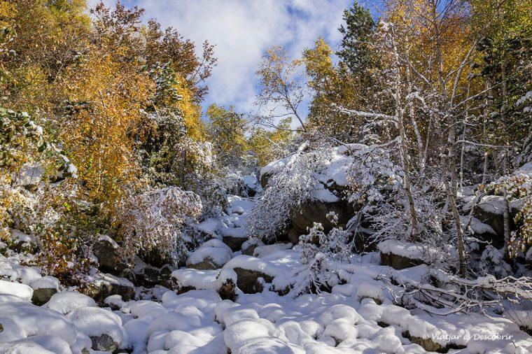 paisatge de tardor i neu a la vall d'aran durant una excursio