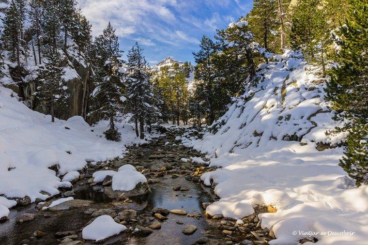 que fer a a la vall d'aran a la tardor: excursions entre boscos i rius